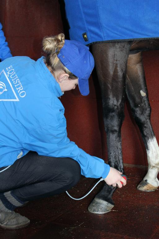 therapeutic ultrasound before stretching