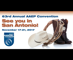 2017 AAEP Annual Convention San Antonio TX