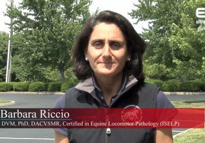 Barbara Riccio DVM